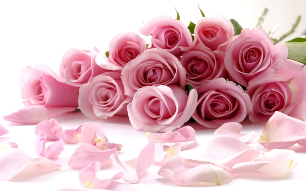 Delicate_Beautiful_Light_Pink_Roses_Wallpaper.jpg
